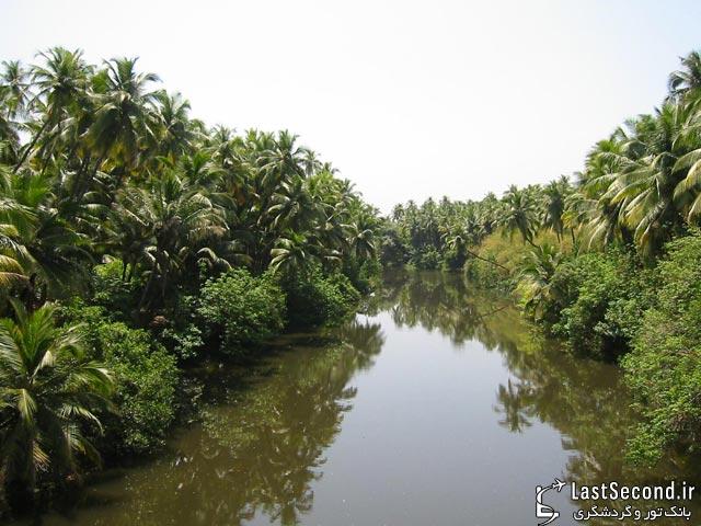 Goa - گوا